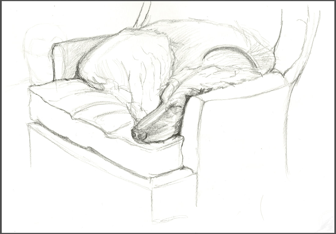 Ginger dog sleeping