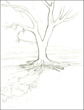 Sketch of Tree by Amanda Barnaby